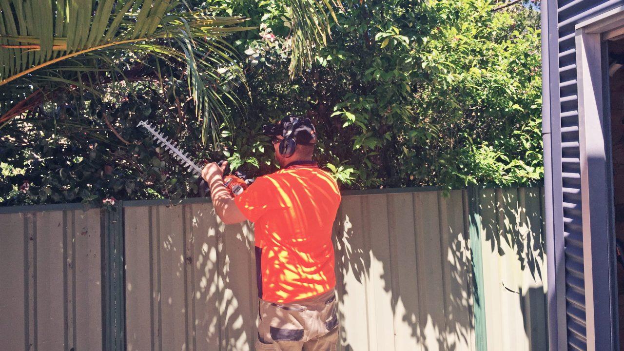 http://gcnr.com.au/wp-content/uploads/2020/11/GC_Hedging-scaled-e1604401407571-1280x720.jpg